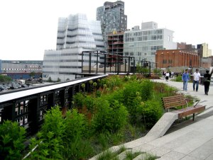 High line image two